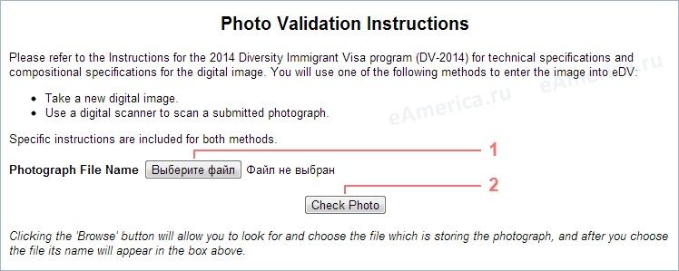 Как заполнять Green Card – самая подробная инструкция, изображение №14
