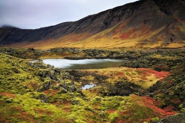 Исландия: когда лучше ехать, изображение №4