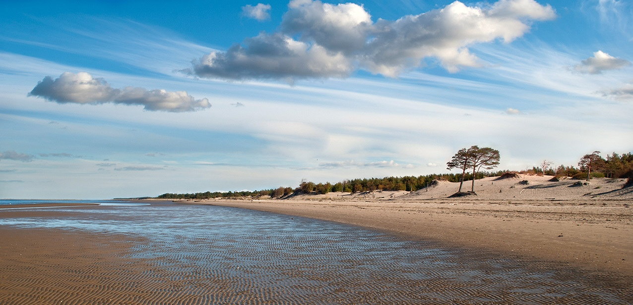 них белое море пляж фото выбери